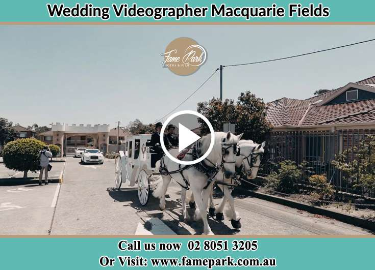 The wedding carriage Macquarie Fields NSW 2564