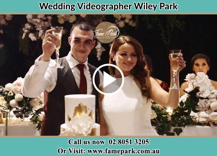 Bride and Groom making a toast at the reception Wiley Park NSW 2195